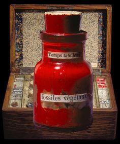 """Detail of """"Fossiles vegetaux"""" bottle – Joseph Cornell, L'Égypte de Mlle Cléo de Mérode cours élémentaire d'histoire naturelle, 1940. Courtesy of the Robert Lehrman trust"""