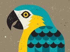 Parrot illustration for a beer label.