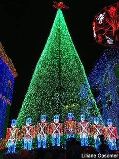 Osborne Lights Christmas Tree - truly my favorite nighttime attraction at DHS, bar none!