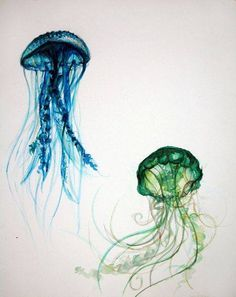 Jellyfish Art Print by Lucy Hodkiewicz Jellyfish Drawing, Watercolor Jellyfish, Jellyfish Painting, Jellyfish Tattoo, Watercolor Paintings, Watercolours, Medusa Animal, Aquarell Tattoo, Painting Inspiration