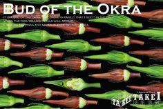 TAKEI FARM POSTCARD No.078