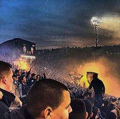 PRELEPO  !  #grobari #jug #Derbi #150 #ludnica #jug Crusader Knight, Football Fans, Wallpaper, Cute, Movie Posters, Basket, Painting, Casual, Design