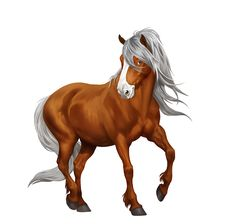 Star Stable Online on Behance