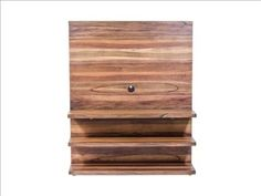 Modern plasma unit - wood back panel for mounting TV, and shelves for storage/devices