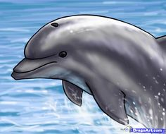 How to Draw a Jumping Dolphin, Step by Step, Sea animals, Animals ...