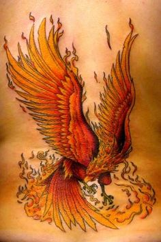 phoenix tattoos - Ecro!