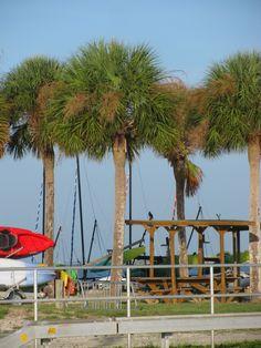 Clearwater Beach to St Pete Beach Honeymoon Island, St Pete Beach, Clearwater Beach, Sunshine State, Florida Beaches, Georgia, Feels, Fair Grounds, Patio
