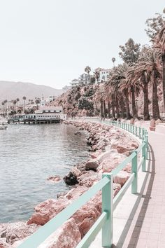 What to do on catalina island Collage Mural, Bedroom Wall Collage, Photo Wall Collage, Photo Collages, Aesthetic Pastel Wallpaper, Aesthetic Backgrounds, Aesthetic Wallpapers, Summer Wallpaper, Beach Wallpaper