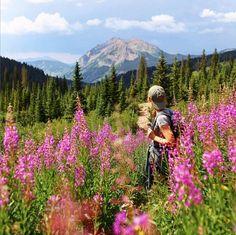 Road Trip To Colorado, Visit Colorado, State Of Colorado, Colorado Homes, Colorado Hiking, Colorado Mountains, Colorado Springs Hikes, Colorado Chevy, Keystone Colorado