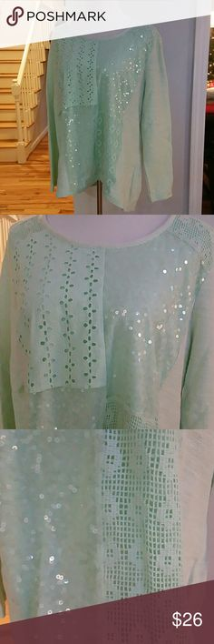 NWT STYLE&CO. TOP NWT Style&co. Sequin&Lace Patch-Work Pullover Top  Color : Pale Spearmint  Size : XLARGE  Materials :  Body : 100% COTTON  Lace : 100% COTTON  Mesh : 100% POLYESTER  Lining : 100% POLYESTER Style & Co Tops