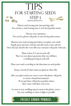 Tips for Starting Seeds ~ ahealthylifeforme.com