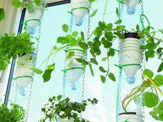 Wer träumt nicht von einem eignen Garten mitten in der Stadt? Mit dieser DIY-Anleitung für eine Windowfarm von Handmade Kultur kommst Du diesem Traum einen Schritt näher.