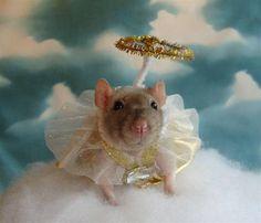 The Rat Fan Club  Hope as an angel