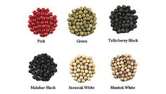 Pepper types... a lot of them... Probably just stick with Black Peppercorn...