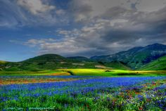 Castelluccio, Norcia, Perugia, Umbria, Italy. We are headed here in a few months