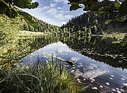 Sommersbergsee Naturschutzgebiet WASNERIN Bad Aussee Spa, Mountains, Nature, Travel, Nature Reserve, Time Out, Vacation, Pictures, Naturaleza