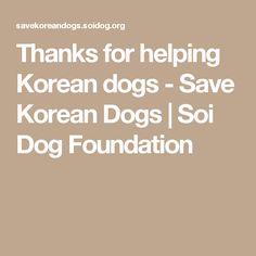 Thanks for helping Korean dogs - Save Korean Dogs   Soi Dog Foundation