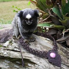 Boa noite!  #mico #macaco #macrame #cabochao #marrom #rosa #petrópolis