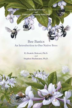 Bee Basics: An Introduction to our Native Bees, by Beatriz Moisset and Stephen Buchmann {book}