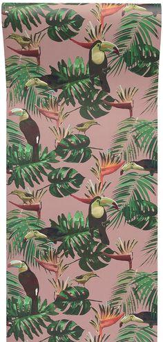 Toucan & Bee Catcher Wallpaper in Pink | Graduate Collection
