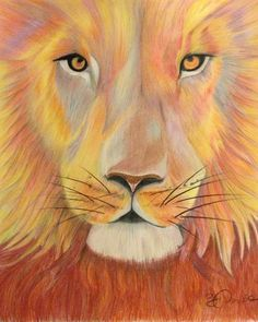 Colour pencil drawing by Gillian Downie