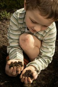 Planting and Dirt Crafts for Kids