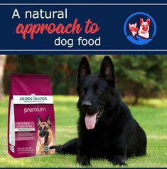 Arden Grange Premium rich in fresh chicken diet has been specially formulated to provide all the daily nutritional requirements for an adult dog with a normal lifestyle. Recommended for: Adult dogs aged requiring a maize/corn free diet Funny Cat Memes, Funny Cats, Funny Animals, Dog Food Online, Dog Ages, Nutritional Requirements, Fresh Chicken, Funny Cat Pictures, Dog Food Recipes