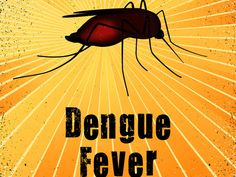 Monsoon Is Here! Read To Know More About The Symptoms Of This Deadly Disease 'DENGUE'    #dengue #denguefever #monsoon