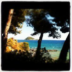 Isola Gallinara - #Liguria #Alassio