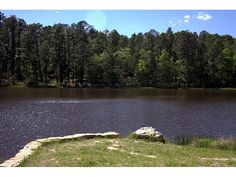 Angelina National Forest, a Texas National Forest located nearby Lufkin, Nacogdoches