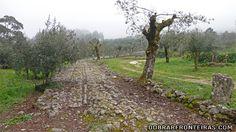 Troço da estrada romana do Alqueidão da Serra