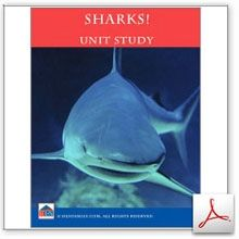 Sharks Unit Study - Homeschool Learning Network | CurrClick