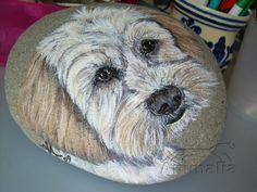 Un cucciolo Yorkshire Terrier, è il 'modello' ritratto in questo dipinto su sasso. Lo sfondo del sasso è stato lasciato del suo colore naturale. Dipinto acrilico su sasso rock painting: sasso di forma ovale leggermente bombato, dimensioni indicative 15 x 18, spessore cm 3,5, peso 1,655 kg, dipinto originale, disponibile, for sale! #rockpainting #cani #yorkie #yorkshireterrier #dogs #animals #animali