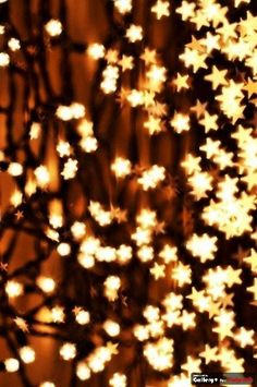 Twinkling like the night sky! #StarsatLongwood #Stars