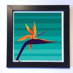"Gallery: Pop series ""Bird of paradise flower"" (2015)  12 x 12 inch, Digital art - Giclee print on enhanced matte paper.  14 x 14 inch, frame - Stain black and glass.  Signed by Jon Savage ---------------------------------- #art #artist #popart #popartist #digitalart #contemporary #contemporaryart #birdofparadise #flower #flowerart #colorful #sandiego #california #jonsavagegallery"