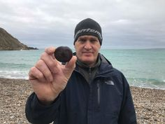 Man finds sea beans from other side of the world washed up on Worbarrow Bay in Dorset Dorset Beaches, Brazilian Rainforest, Sea Beans, North Cornwall, Jurassic Coast, Conkers