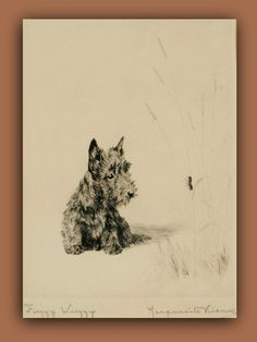 "be kind to your Scottie  ~they have such tender little hearts~  Scottie puppy watching caterpillar:   ""Fuzzy Wuzzy"", vintage sketch by Marguerite Kirmse"