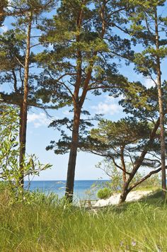 View of the Baltic Sea from a beach outside the coastal city of Palanga, which is several miles north of Klaipeda.