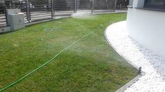 Trawnik z rolki na wysoki połysk + system automatycznego nawadniania