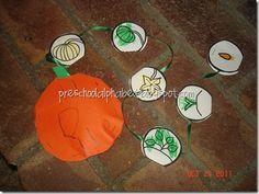 pumpkin life cylce