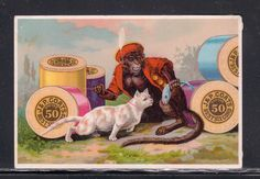 1890'S TRADE CARD, MONKEY AND CAT,