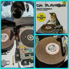 初代がぼろぼろになったので2台目を購入。あとはDJにおまかせ~~😹💿🎧💃 #catplayhouse #catscratchingpad 猫DJ #DJ猫 #ターンテーブル風爪研ぎ#白黒猫 #シロクロネコ #猫 #ねこ #はちわれ #桜耳 #さくら猫 #地域猫 #にゃんこ #にゃんすたぐらむ #猫好き #愛猫 #ねこ部 #cats #meow🐱