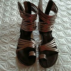 Gladiator Sandals Bronze colored sandal. Zipper in back. Never been worn outside. Just a bit too big for me. Shoes Sandals