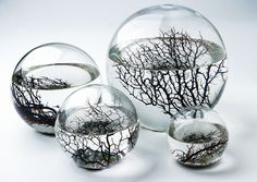 A little bit clostrophobic though :)  The Original EcoSphere® is the world's first totally enclosed ecosystem - a complete, self-contained and self-sustaining miniature world encased in glass. Be wary of inferior and lower quality imitations. Easy to care for, an EcoSphere is an incredible learning tool that can provide powerful insights about life on our own planet... and provide a glimpse of technology that's shaping the future of space exploration.