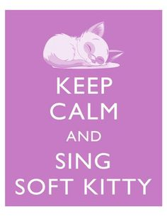 Keep Calm and Sing Soft Kitty Big Bang Theory Art by tspPrints Big Bang Theory, The Big Theory, The Big Bang Therory, Georg Christoph Lichtenberg, Soft Kitty Warm Kitty, Keep Calm Quotes, Sleepy Cat, Film Serie, Cultura Pop