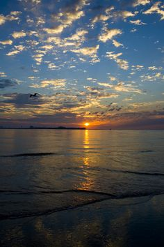 Beautiful Ocean City NJ Sunrise...    KCOCCO ~ photo