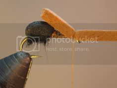 Fishing Videos, Ants, Fly Fishing, Washington, Ant, Fly Tying, Washington State, Camping Tips