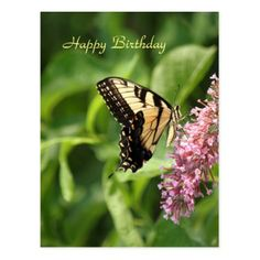 #Tiger Swallowtail Butterfly 8970 Birthday Card - #birthday #gifts #giftideas #present #party