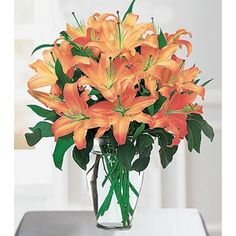 Tiger lillies are my favorite flowers, I like all lillies but since Orange is my favorite color, these work better