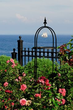 The Duluth Rose Garden.  Somehow we missed this, when we visited in 2007